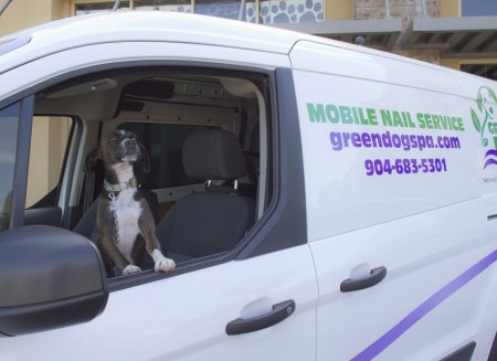 Dog Grooming Services - Mobile Nail Trim