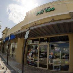 Image Gallery 07 - Green Dog Spa Jacksonville FL
