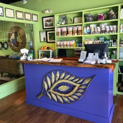 Image Gallery 08 - Green Dog Spa Jacksonville FL