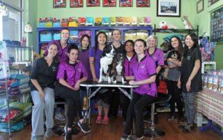 Green dog Spa staff